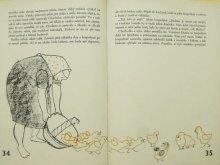 他の写真1: 【チェコの絵本】オルガ・パヴァロヴァー「Husa Chocholka」1958年