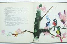 他の写真3: ヤーヌシ・グラビアンスキー「Jak jeden malarz chciał namalowac szczesliwego motyla」1960年