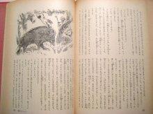 他の写真1: 茂田井武など挿絵、初山滋/装丁「世界少年少女文学全集14」1955年
