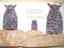他の写真2: スージー・ボーダル「BIRD ADALBERT」1983年