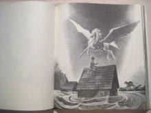 他の写真2: リンド・ワード「白銀の馬」1974年
