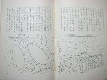他の写真2: 和田誠、長新太、井上洋介など「童話カーニバル1 ちいさなひとたちへ」1967年