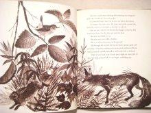他の写真1: レナード・ワイスガード「the Little Woodcock」1967年