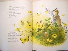 他の写真1: エイドリアン・アダムス「Butterfly Time」1964年